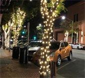 Twinkle Lights on B Street