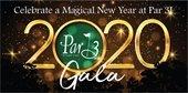 2020 Gala graphic