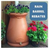 Picture of a rain barrel and flowers