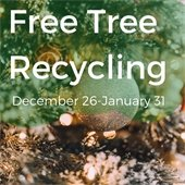 Free Tree Recycling