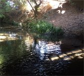 After picture of a clean creek
