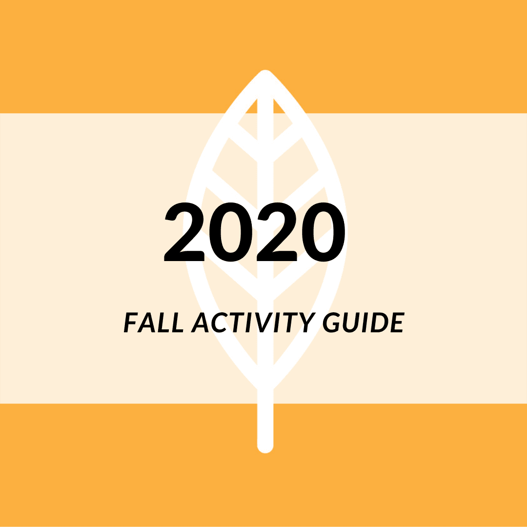 Image of Fall 2020 Icon.