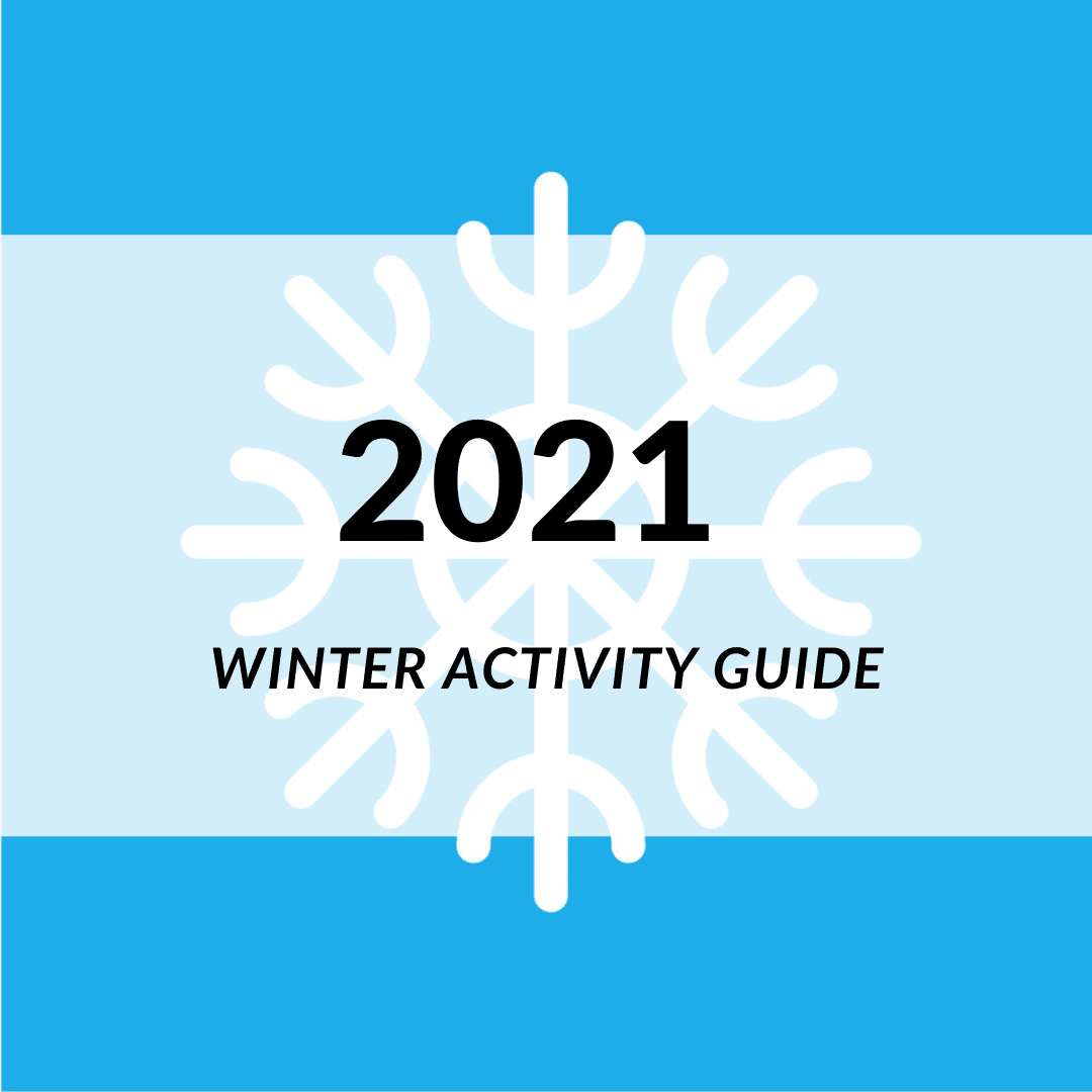 Image of Winter 2021 Icon.