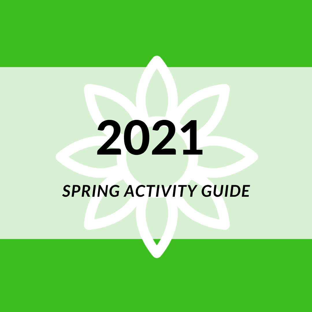 Image of Spring 2021 Icon.
