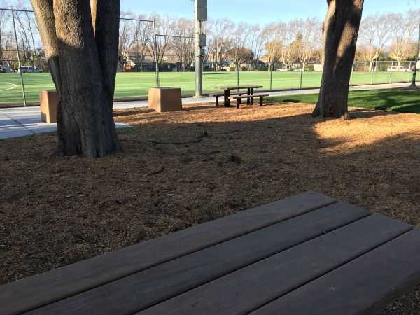King Park - Picnic Area