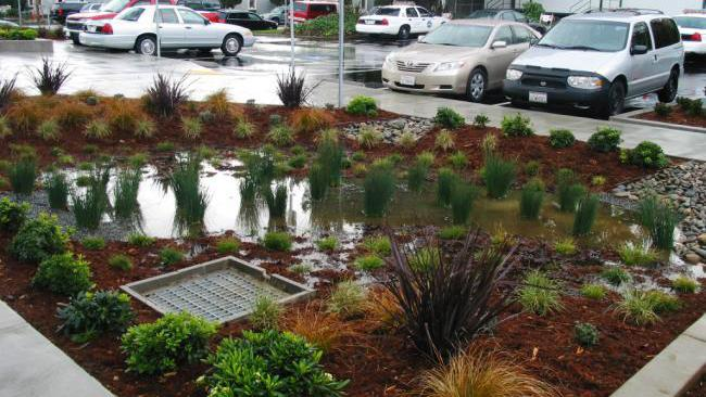 Green Infrastructure - Image courtesy of San Mateo County