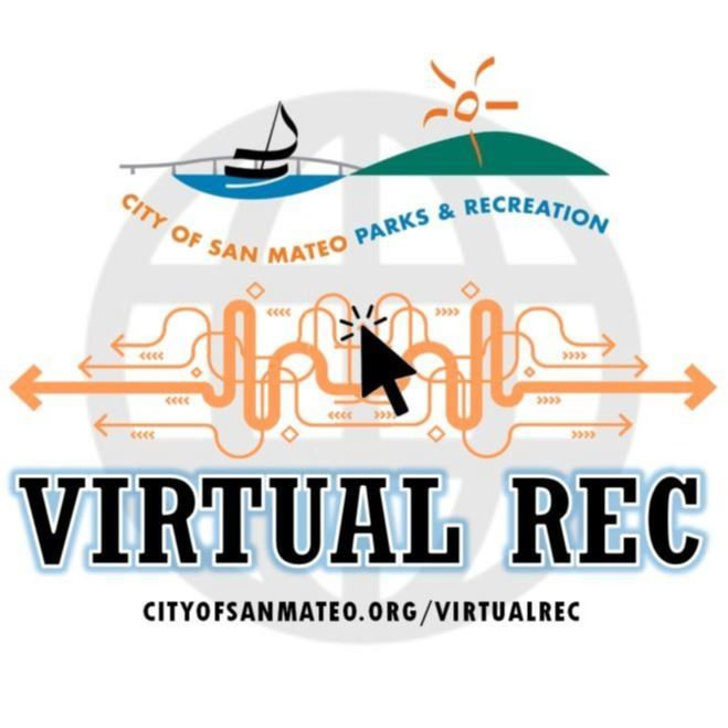 Photo of Virtual Reg Logo.
