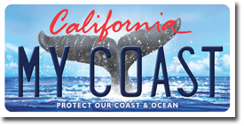 California Whale Tail Licence Plate