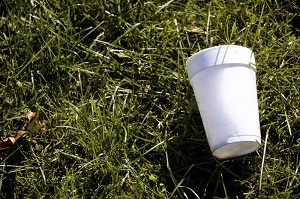Styrofoam on Grass